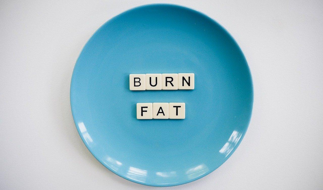 معدل حرق الدهون