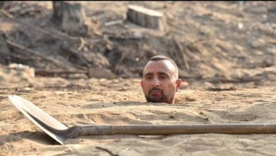 أحمد السقا في السرب