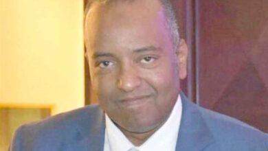 الدكتور محمد خضر علي