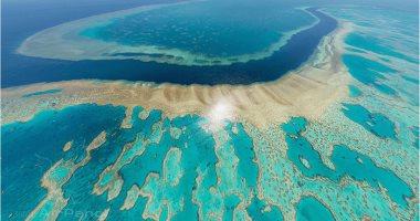 الحاجز المرجانى